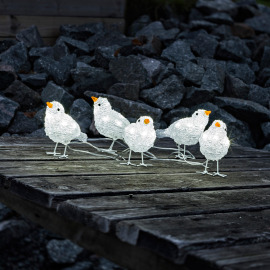 Acrylic LED birds, set of 5, 40 coldwhite LEDs