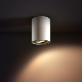 Philips hue Pillar LED 1 Spot white